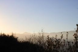 Californian Wilderness